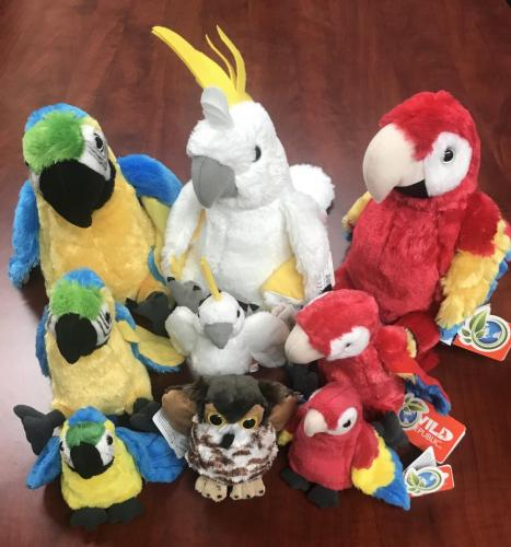 Plush Birds $8.00-$17.50<br />Eagles, Macaws, Cockatoos, Owls, Pelicans